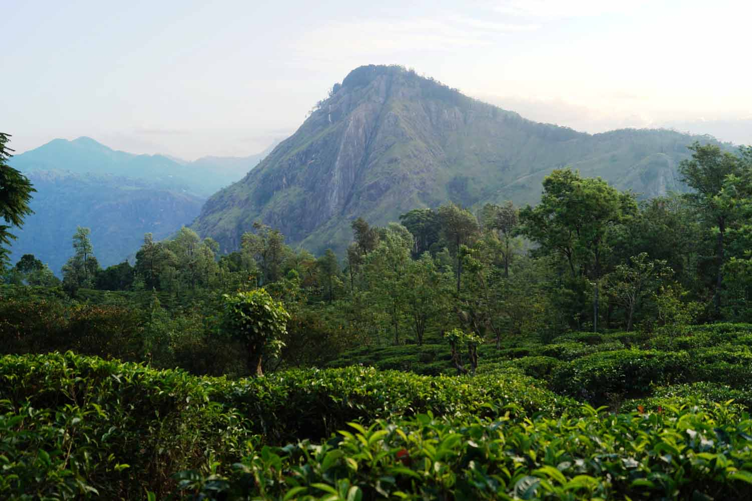Little Adams Peak, Sri Lanka