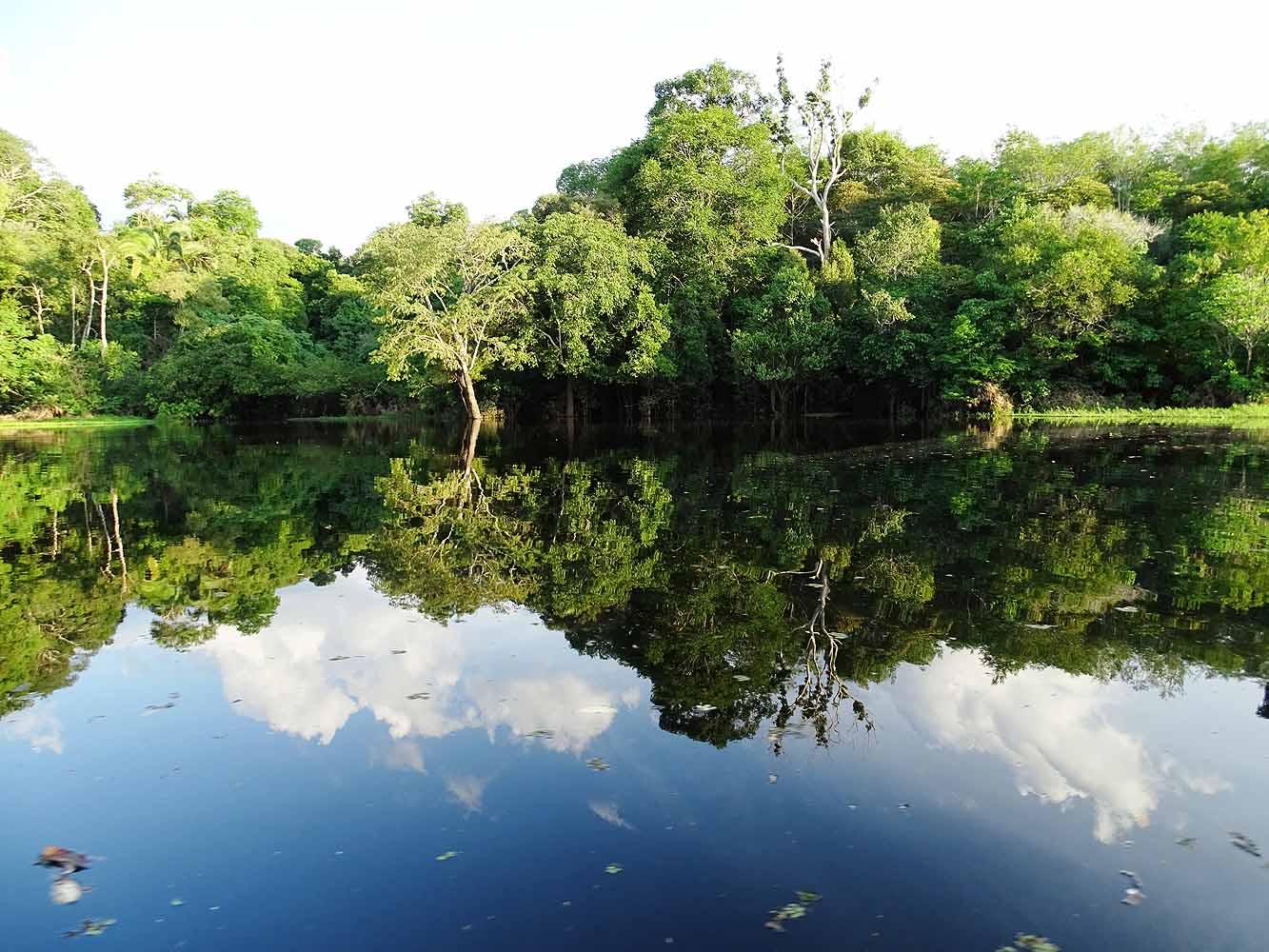 Brasilien Amazonas – Reisetipps und wie es wirklich ist